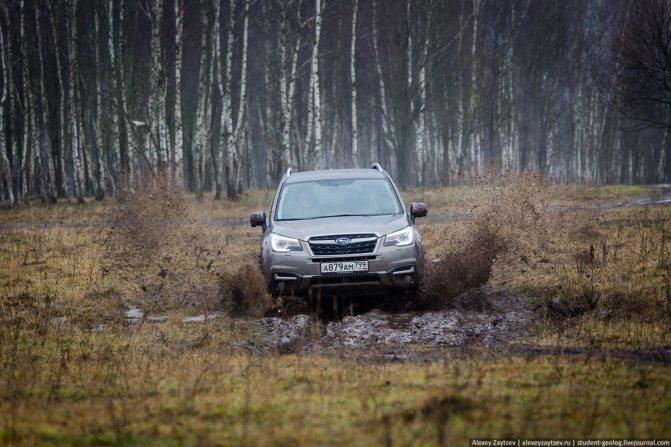 subaru forester 2018 на бездорожье полный привод фото